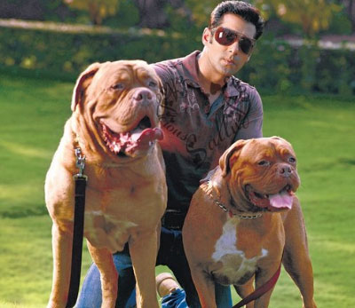 salman khan dogs 2018
